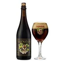 Lupulus brune 75cl